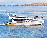 4 Ever Wild Boat