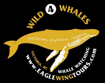 Wild 4 whales logo 2